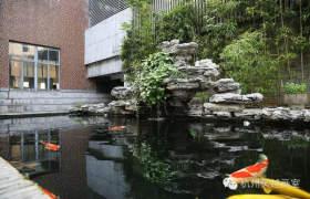 吴越画室  校园风光